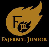 logo_fajerbol_napis_bez_tla